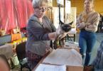 wystawa-kotow-torun-5